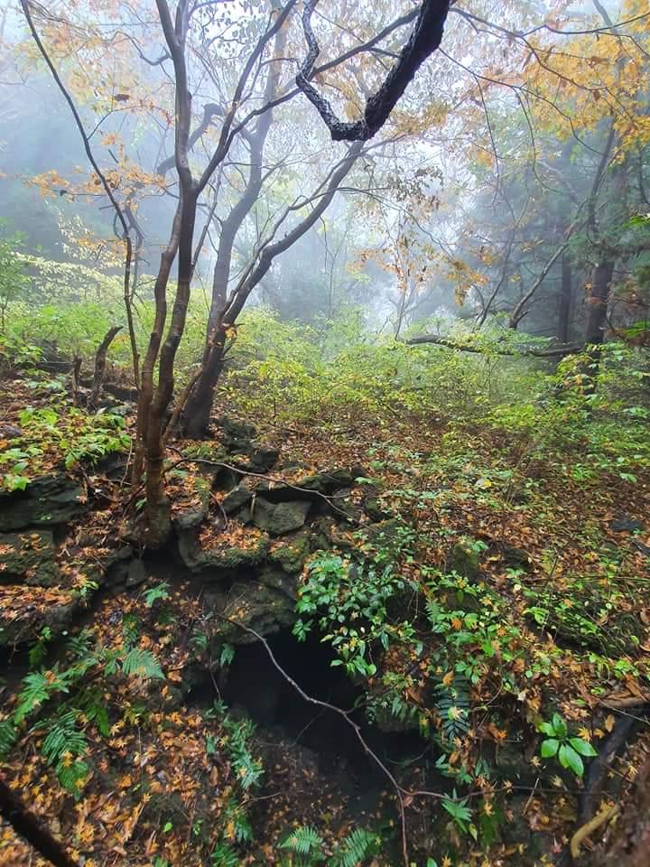 거문오름(UNESCO 세계자연유산)