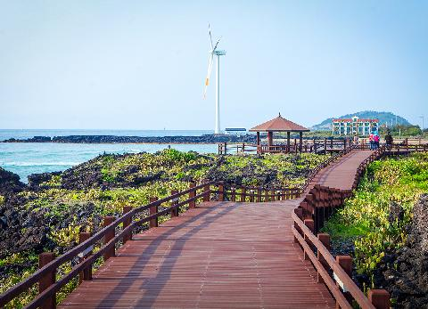 In the way that the sea becomes a friend… Travel Jeju along its coastal promenade 대표이미지