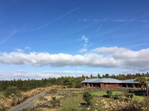 흐리던 전날의 하늘과 달리, 푸른 하늘로 액자 같은 풍경을 보여주던 포도호텔에서의 아침.