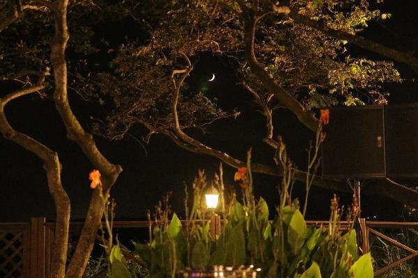 제주씨에스호텔의 흑돼지바비큐~무한제공에ㅡ싱싱핞에 전복까지~눈도 입도 호강~~<br>호텔의 달밤도  아름다웠네요