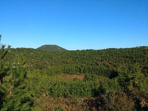 #아부오름  분화구 주위를 둘러 심어놓은 삼나무와 그 뒤로 보이는 다랑쉬오름 및 파란 하늘색이 조화롭습니다.