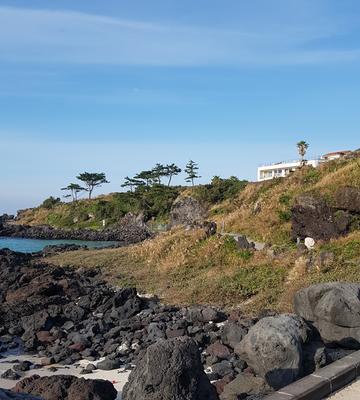 #곽지해변 산책로에서 봄날까지 걷다