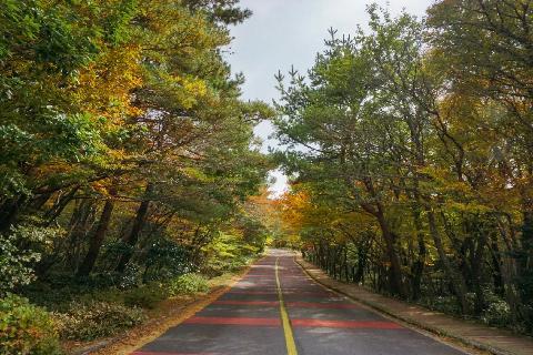 #한라산 #영실코스 #가을한라 #풍경사진 #아름다움