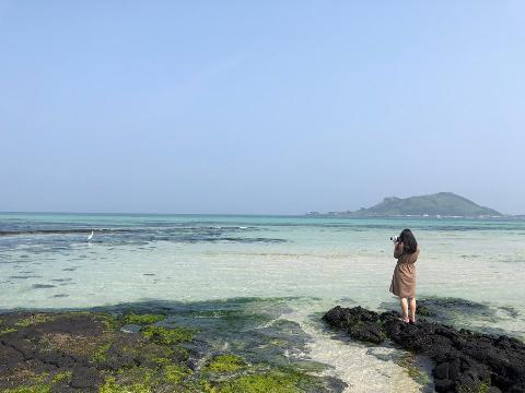 친구와 함께 간 여행~ 제주도는 카메라에 담기는 모든 풍경이 예술이었다.