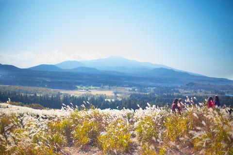 산굼부리에서 만난 가을 색  산책하기 너무 좋은 곳입니다.