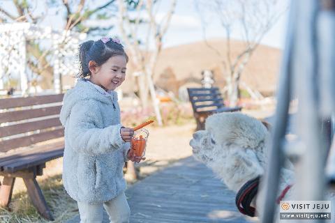 동물과 스킨십하고 정서적 교감도 나누고 <아이들과 함께하는 동물 체험> 대표이미지