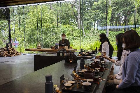 Where to Have a Calming Green Tea Experience on Jeju 대표이미지